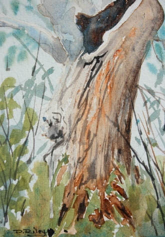 landscape tree painting, gum tree, depth