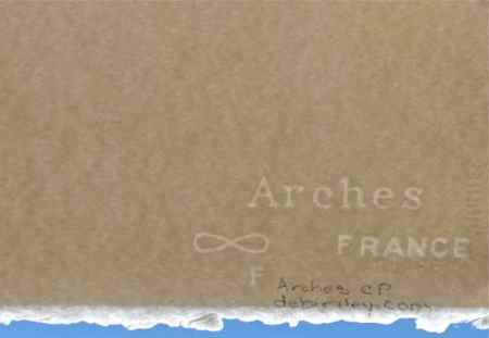 Arches cold press debiriley.com