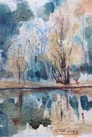 trees reflections debiriley.com