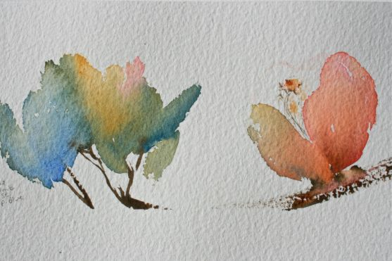 watercolour blooms, watercolor techniques, beginner lessons, debiriley.com