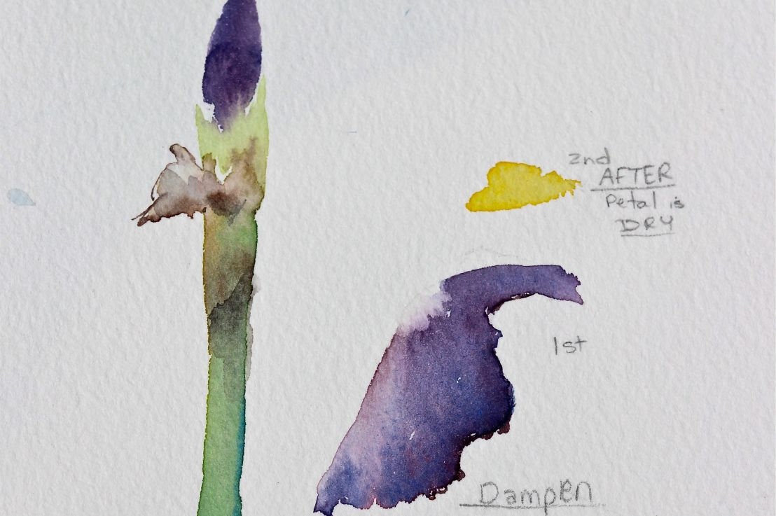Quick and Easy Iris Bud – Watercolours
