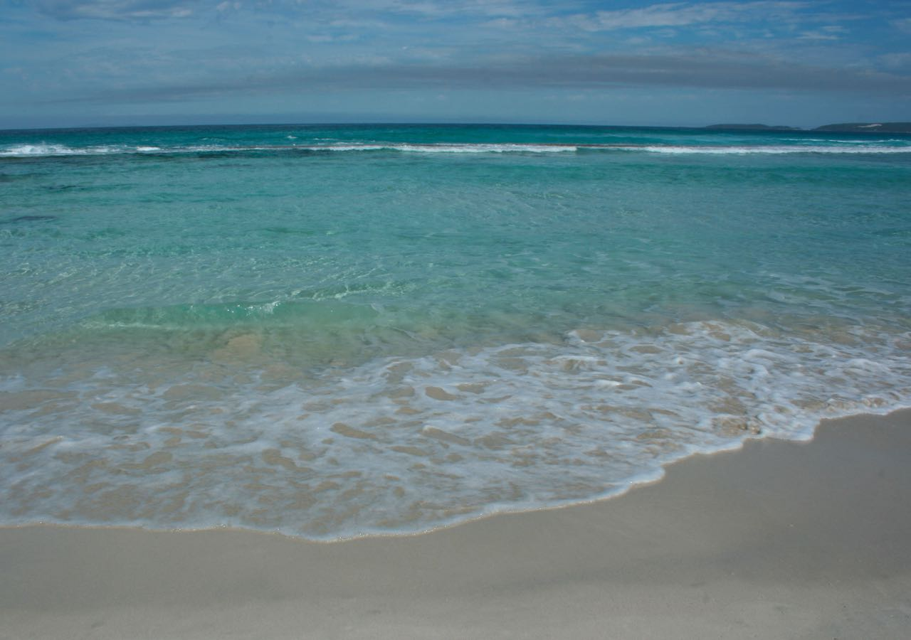 Cobalt Teal Ocean debiriley.com