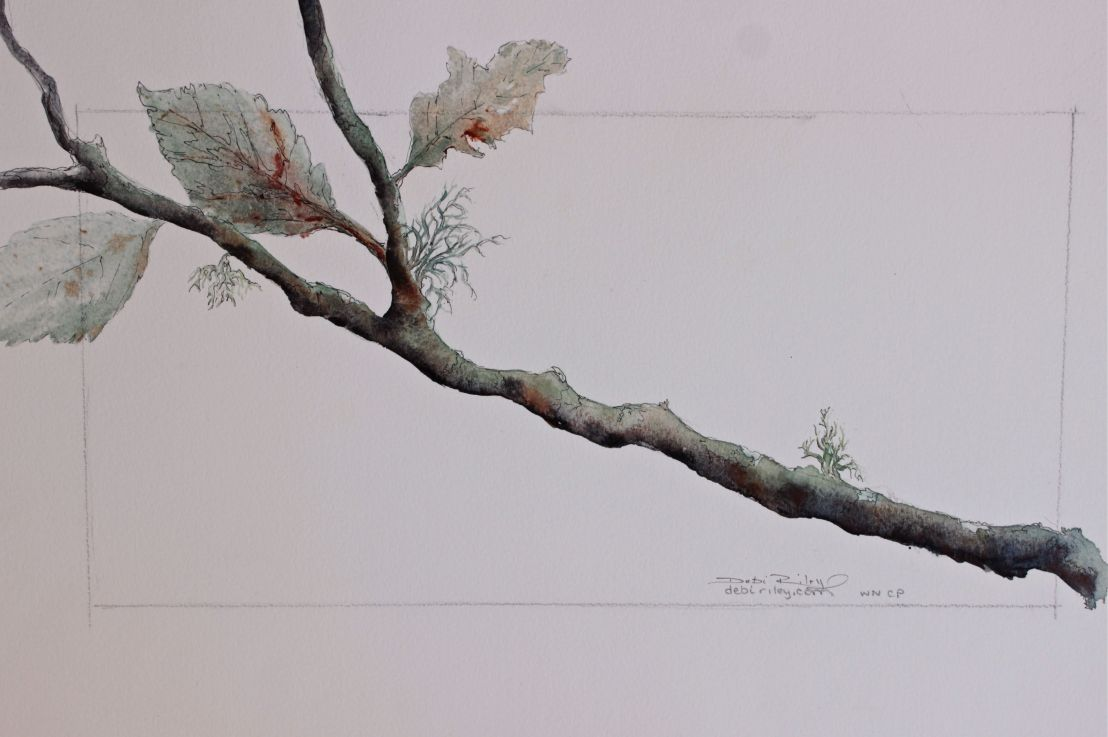 Watercolour Branch andLeaves