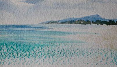 Shoreline dry brush  debiriley.com