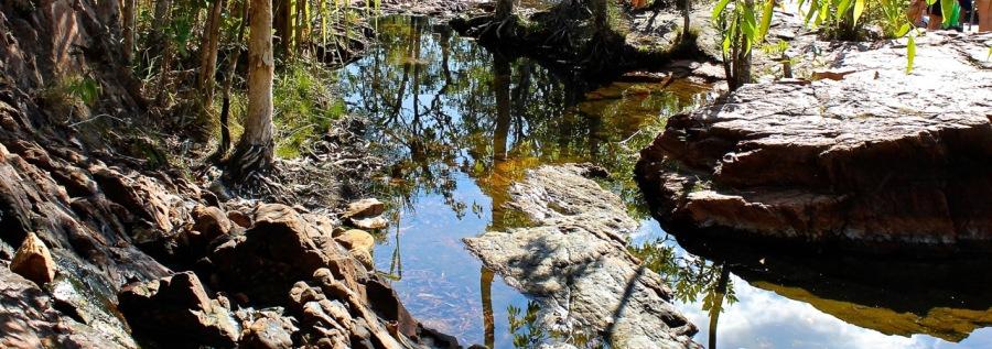 Outback Oasis debiriley.com