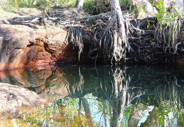 painting water, NT australia oasis greens, debiriley.com