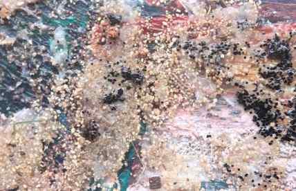 Desert Sand  debiriley.com