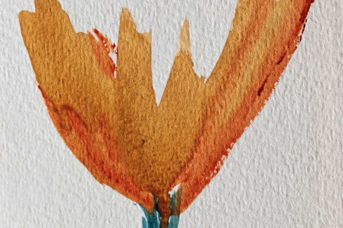 Flower Blossom ColourStudy
