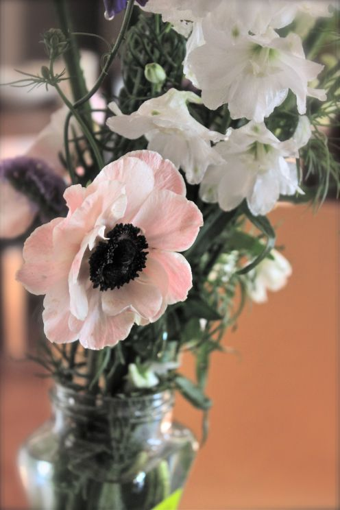 lovely pale pink flowers in a vase, photo, debi riley art