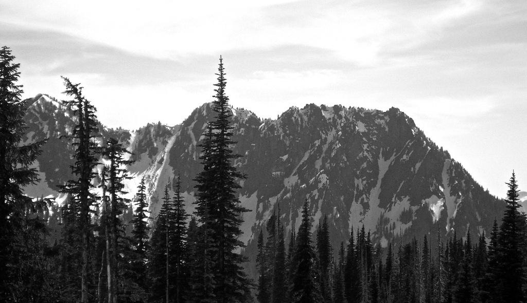 Mt. Rainier road views b/w photo Kelly Riley Walker
