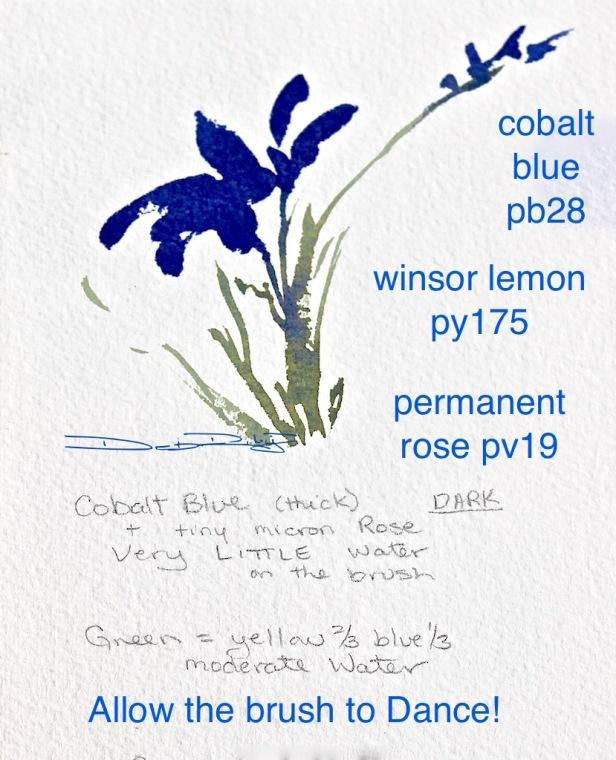 cobalt watercolour flowers debiriley.com
