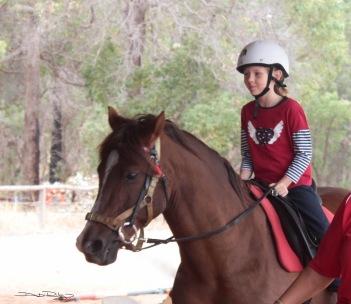 Riding on a part Arabian Chestnut