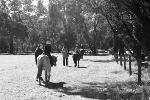 Horse Ride in winter, b/w photo  debiriley.com