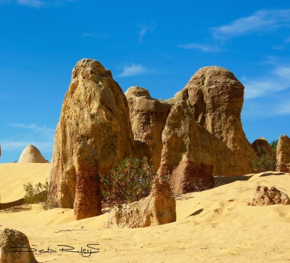 Rising Stones, Pinnacles, debiriley.com