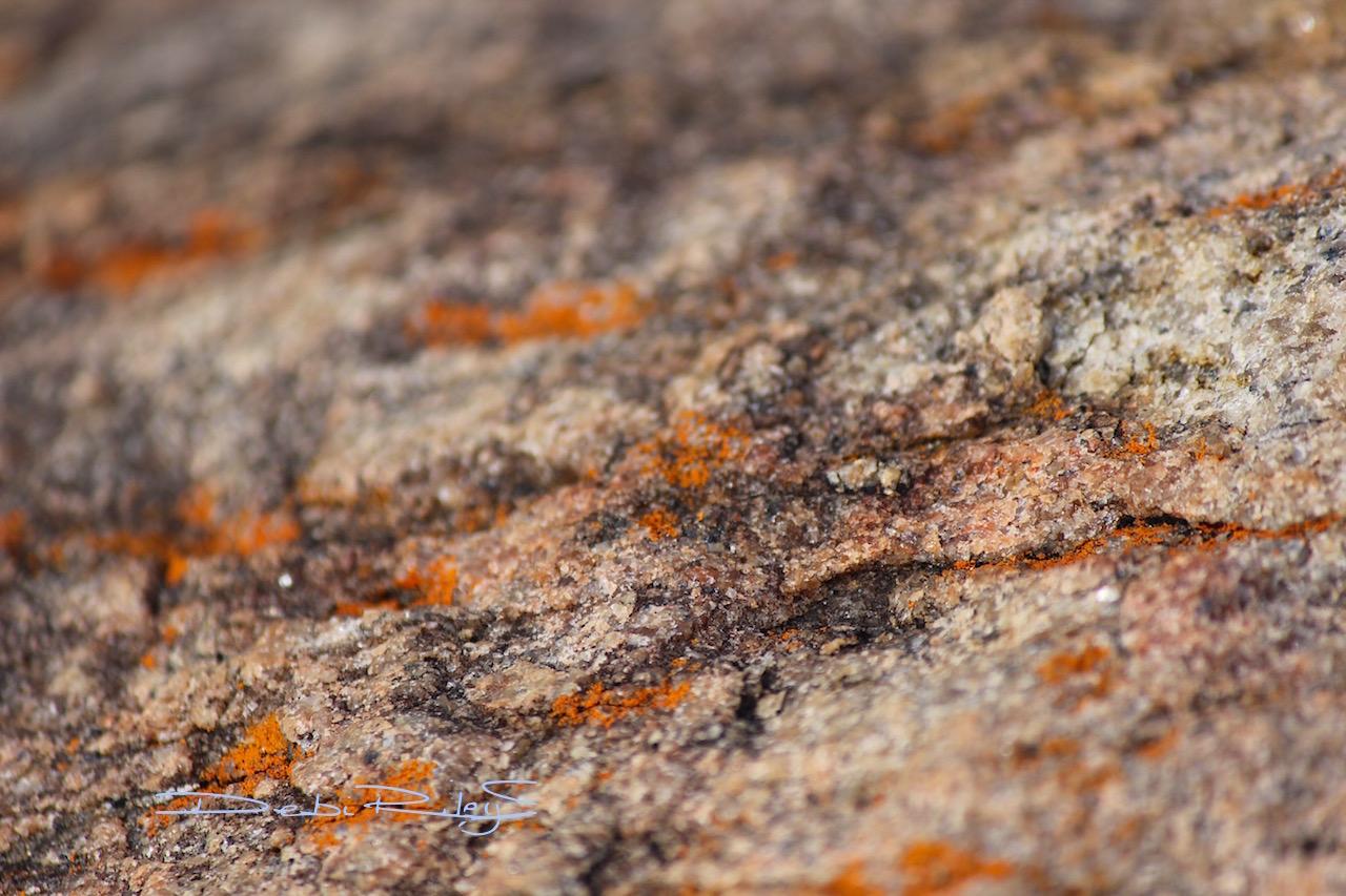 rock texture patterns debiriley.com