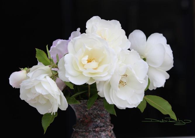 Still Life Florals in vase photograph debiriley.com
