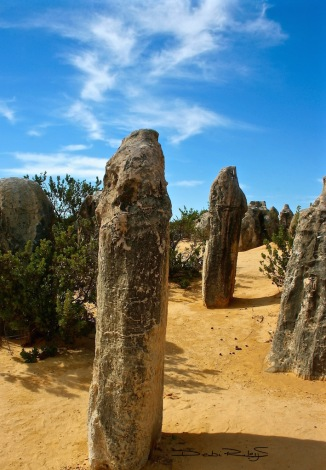 Totems, the Pinnacles, debiriley.com