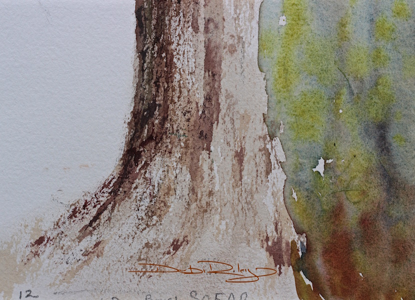 Watercolour trees part ii relaxing debi riley for How to paint a tree