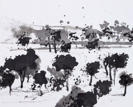 landscape in black ink, without distracting colour, debiriley.com