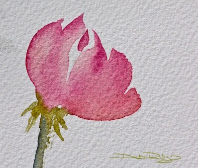 watercolour rose bloom, no fiddling, debiriley.com