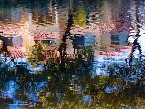 Colour and Light, water reflections, inspirations, debiriley.com