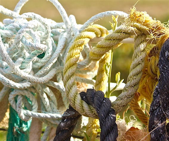 color twined ropes, in harmony, debiriley.com