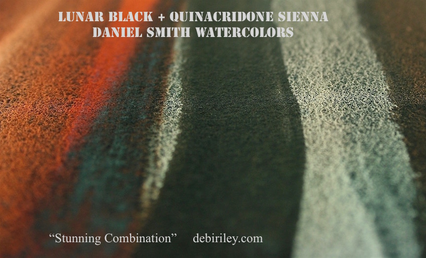 stunning combination watercolors, lunar black, quinacridone sienna,watercolor painting, debiriley.com
