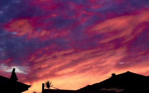 Wild colors morning sky colors, photo, debiriley.com