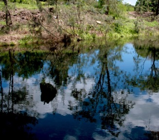 river water reflections, photograph, debiriley.com