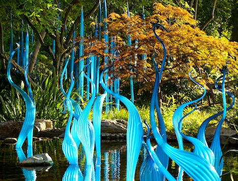 chihuly cobalt teal sculptures, explosion of color, debiriley.com
