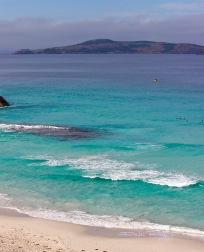 beguilingcobalt teal blue pg50, beach photo, debiriley.com