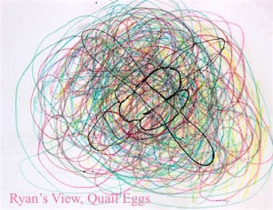 a child's eye, quail egg drawing in color, debiriley.com