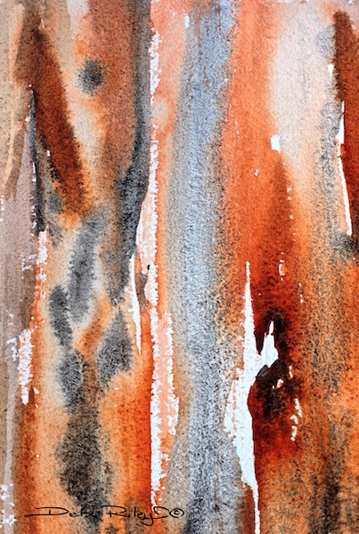Tree Bark Watercolors, Debiriley.com