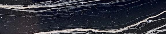 cropped-filaments.jpg