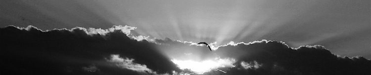 skies in black and white, photography with mood, debiriley.com