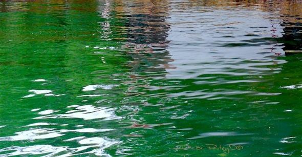 Sydney emerald green water, debi riley art, debiriley.com