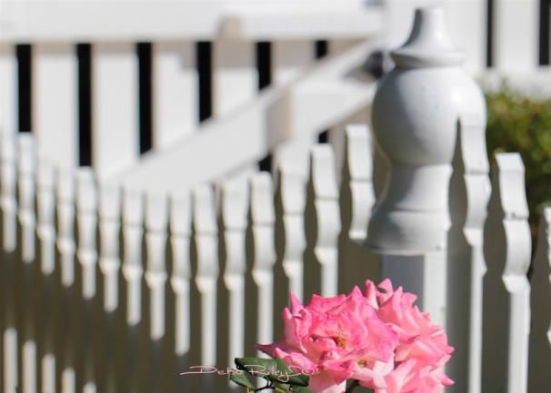 mothers day, mothers art flowers, debi riley art, debiriley.com