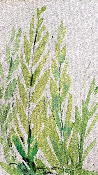 fern leaves. green watercolors, debi riley contemporary art