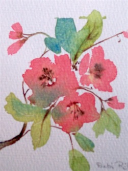 flower blooms in summer, watercolor painting, debiriley.com