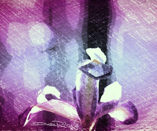 bright purple iris digital art painting, debi riley art