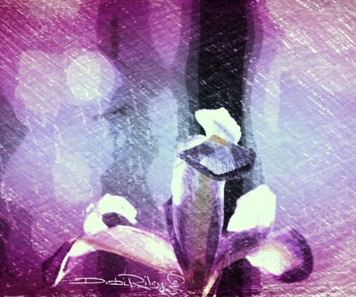 bright purple iris digital art painting, debi riley art