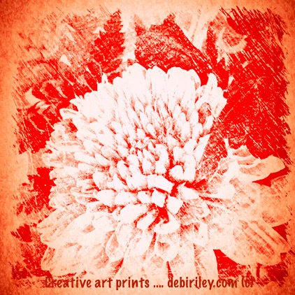 digital art photo floral print in red, orange, antiqued, debiriley.com