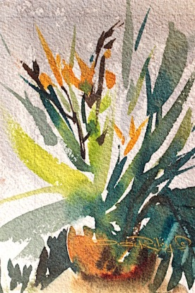 bird of paradise watercolor painting, debiriley.com