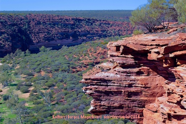 sightseeing Kalbarri gorges, Western Australia travel destinations, debiriley.com