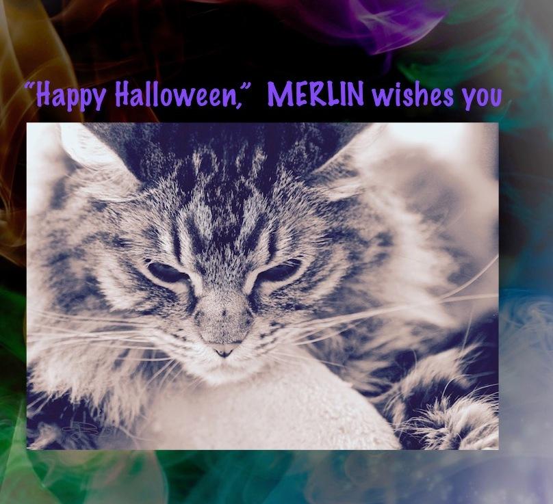 Merlin's Halloween