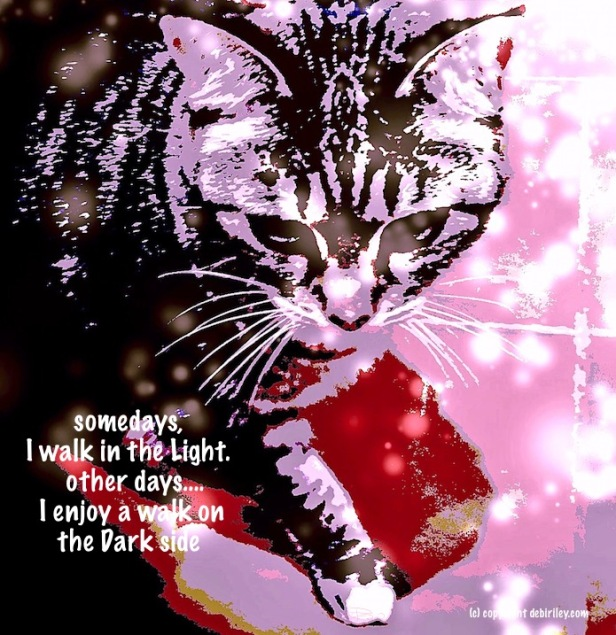 cat photo, digital art of cat, cat whimsy, National Cat Day quotes, cat art, debiriley.com