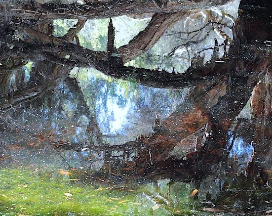 zen strolls, water reflections photography, calm, creativity, debiriley.com