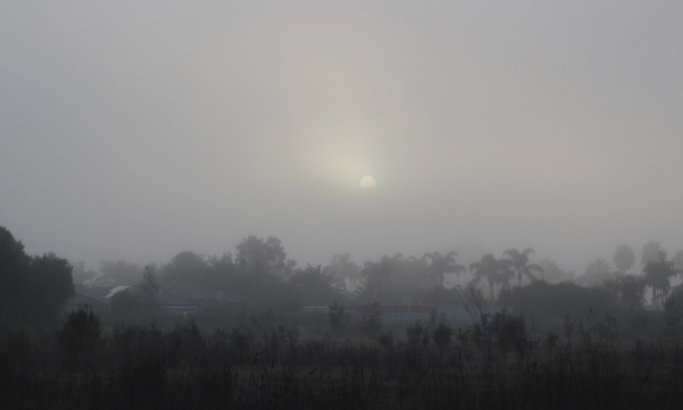 morning fog photography, sunlight, peaceful nature scene, debiriley.com