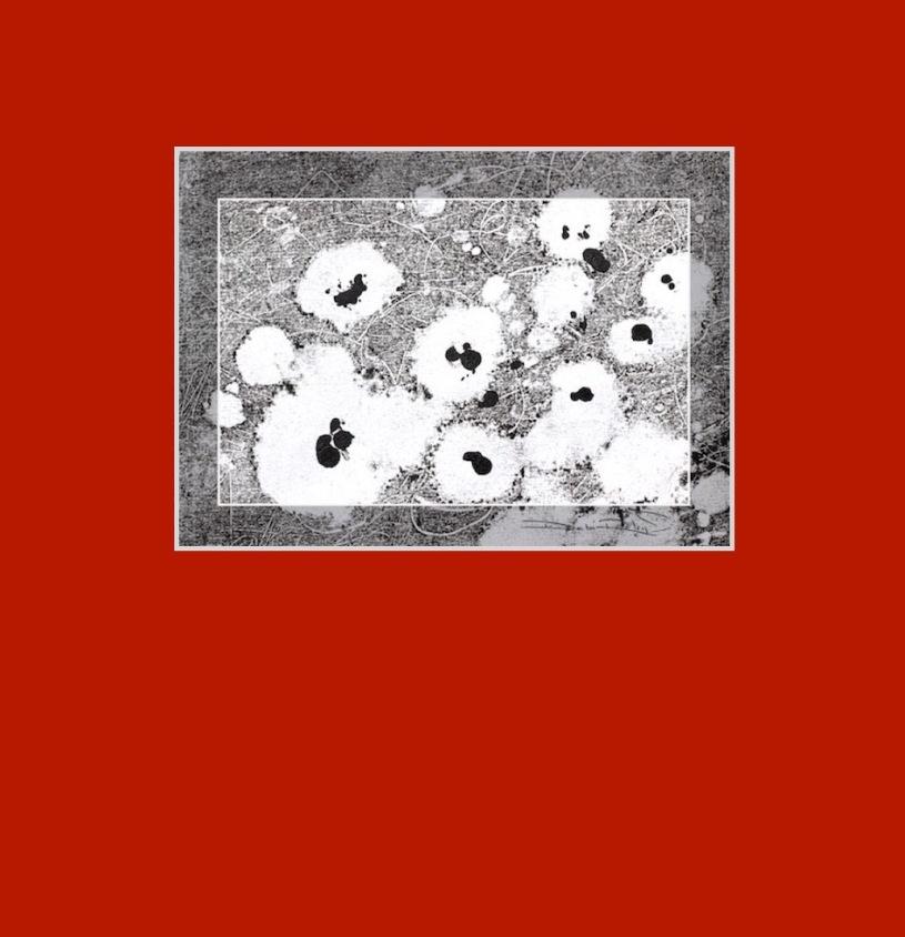 monotype process, black and white design on red matt, debiriley.com