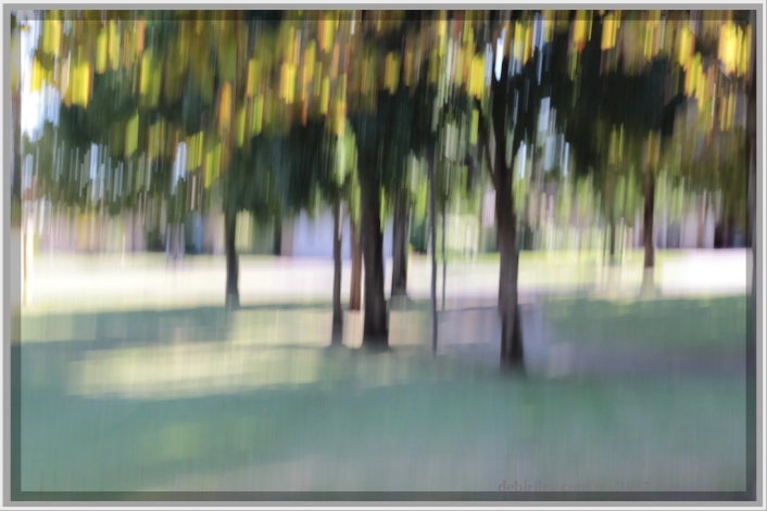 creative photography, conveying the mood and feeling, deliberate camera blur, landscape summers ending, debiriley.com